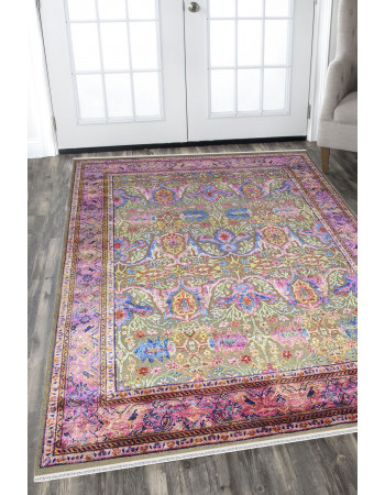 Border Fall Sari Silk Area Rug