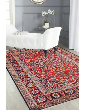 Patte Kashani Area Rug