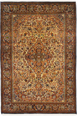 Sona Medallion Area Rug