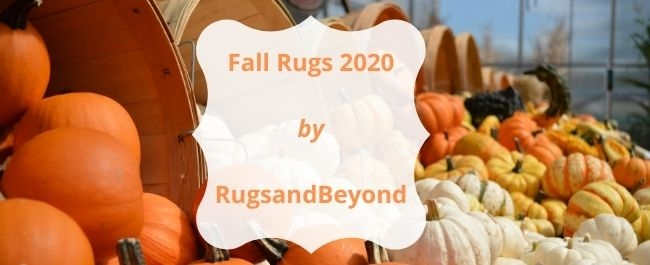 fall area rugs 2020